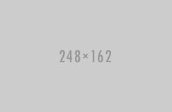 Построчное заполнение ФНО 220.00 за 2016 год (Семинар)